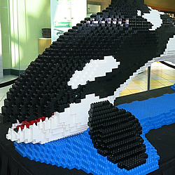 Canuck Place Orca